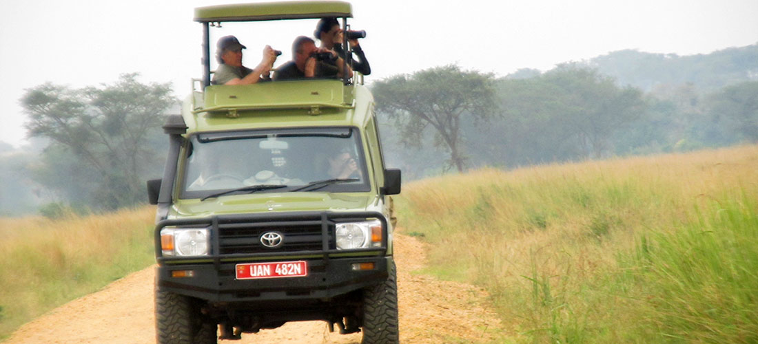 Enjoying the game drive in Queen Elizabeth wildlife park Uganda.