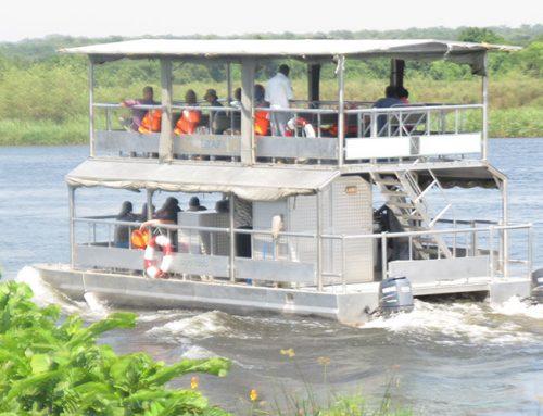 7 Days Uganda Safari Adventure