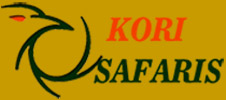 Kori Safaris